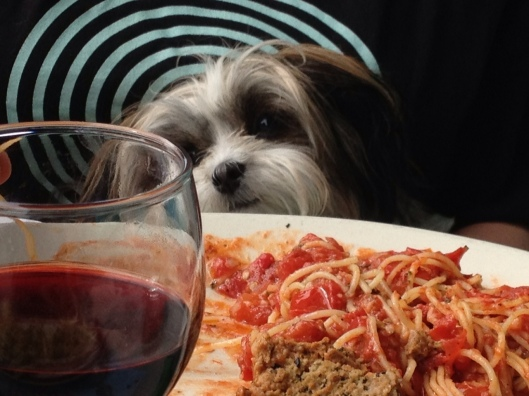 Fun Places to eat with your fourlegged companion