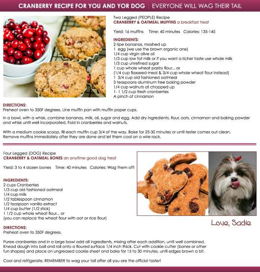 CRANBERRY RECIPE for you and your DOG