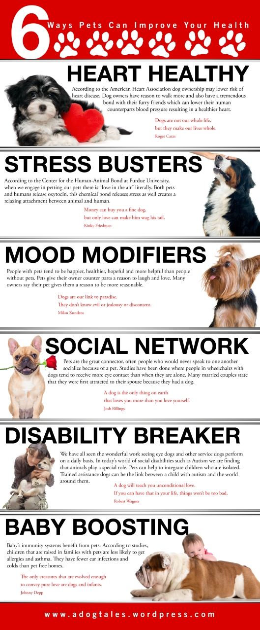 DOG_INFOGRAPHIC_HEALTH