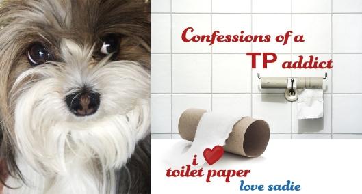 SADIE_TP_CONFESSIONS
