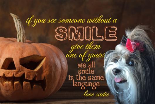 pumpkin_smile_sadie